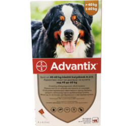 Advantix spot on 40-60 kg közötti kutyák részére