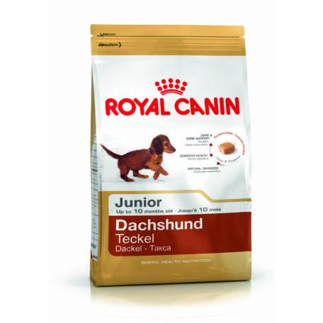 Royal Canin Dachshund Junior 0,5 kg