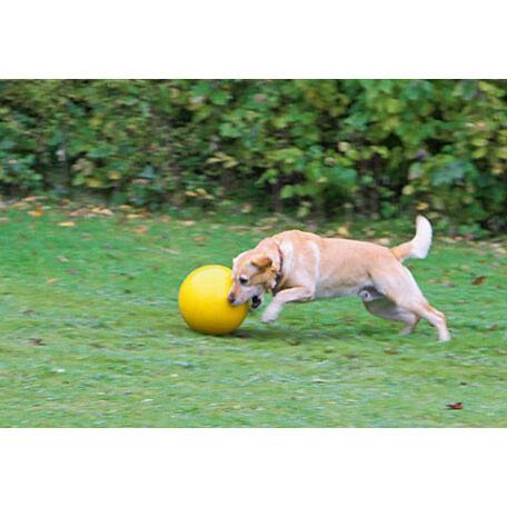 KERBL Játéklabda kutyáknak