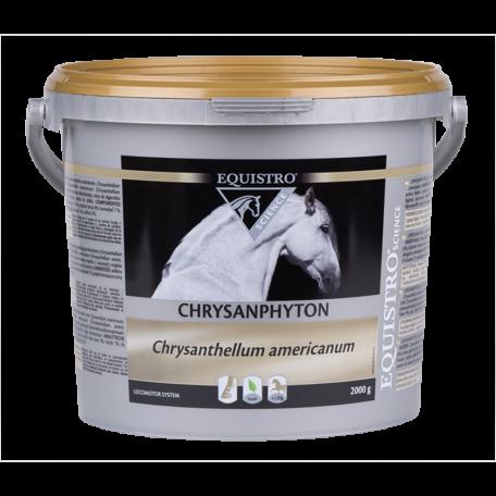 Equistro Chrysanphyton 2 kg